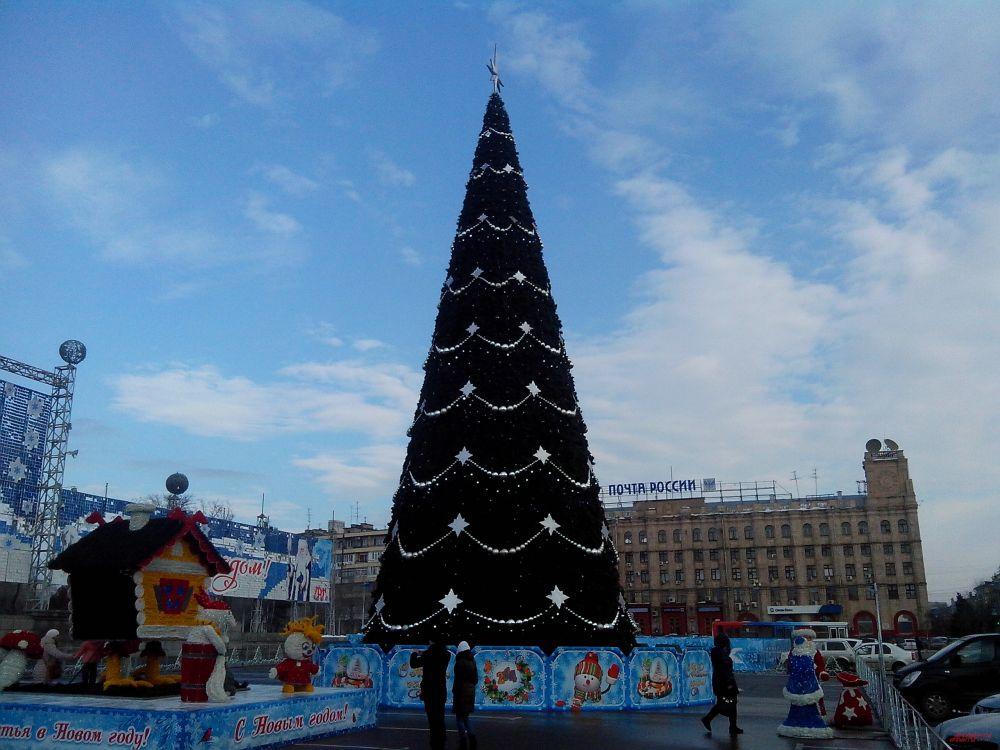 В Волгограде ёлка была установлена на площади Павших борцов, где также разместились избушка бабы Яги и домовёнка Кузи. Позади ели была огорожена территория, где вскоре будет залит каток.