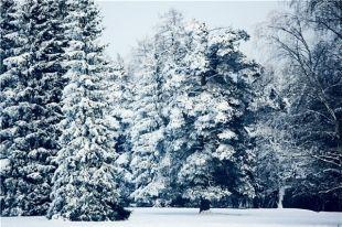 В Челябинской и Курганской областях  похолодает до -35