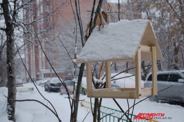 Птицы покинули кормушки.
