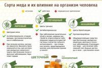 Пчелиный воск - полезные свойства и рецепты применения
