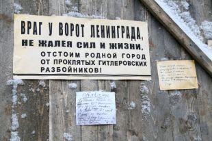 На Урале проживает 684 жителя блокадного Ленинграда