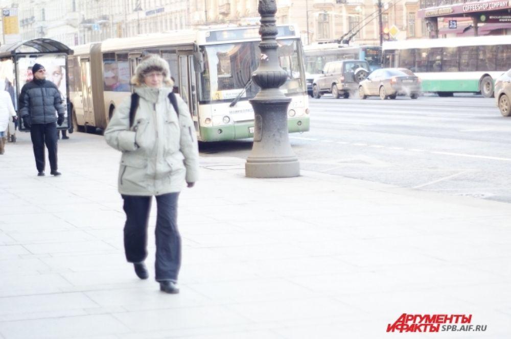 В Петербурге до конца рабочей недели продержится морозная и солнечная погода. Уже в субботу и воскресенье синоптики прогнозируют, что температура воздуха поднимется до -6 градусов.