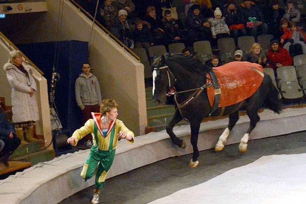 Если этот парень так улепетывает от лошади, то что было бы, если б вырвался лев?