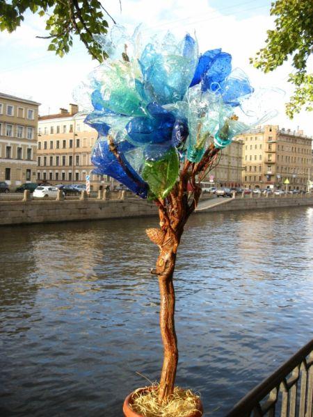 Бутылочное дерево гармонично вписалось в петербургский пейзаж.