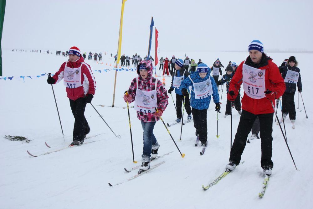 Порядка 5 000 северян приняли участие в забеге.
