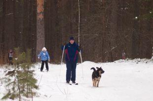 В Челябинскую область снова придут морозы до -30 градусов