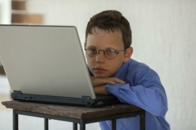 Не подходящую по возрасту информацию дети могут получить в интернете.