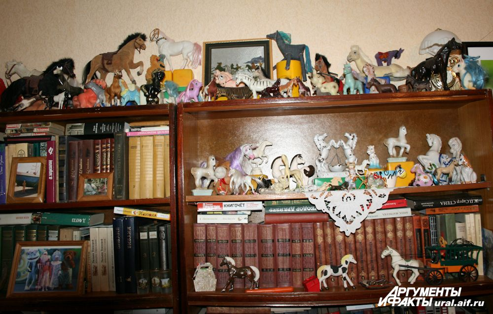 Постепенно коллекция лошадей занимает все больше жизненного пространства.