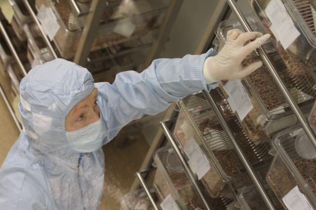 Сотрудник научного центра во время работы.
