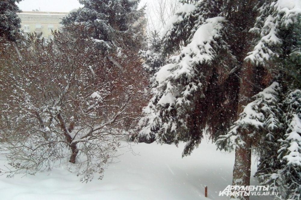 Снежная сказка в центре Волгограда