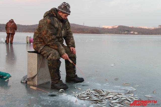 нерестовый запрет на рыбалку в челябинской области
