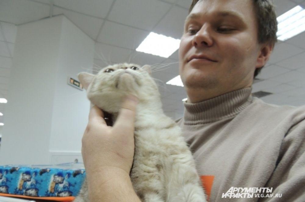 Кот с драгоценным именем  Бриллиант очень любит  своего хозяина.