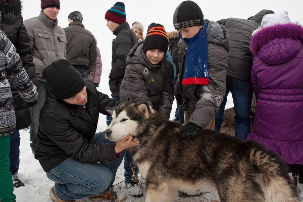 Все собаки на соревнованиях очень дружелюбные