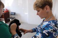 Татьяна Дугина ещё поборется за приют для животных «Друг».