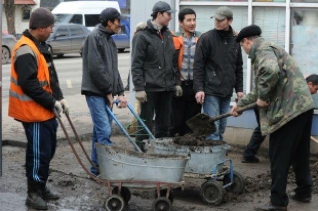 Дубровский намерен выпроводить мигрантов из Челябинской области