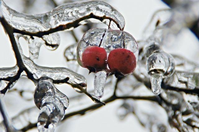 На Среднем Урале похолодает в середине недели