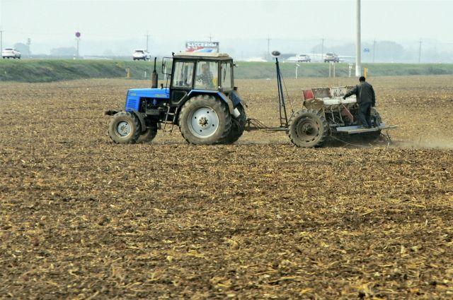 Фермеры Екатеринбурга получат субсидии в 1,5 миллиона рублей