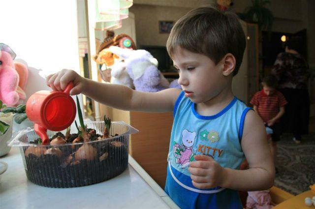 Выпускников детдомов из Новосибирска обучат жизни на специальной квартире