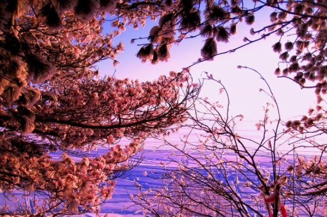 Малооблачная, без осадков погода сохранится на всей территории Приморья