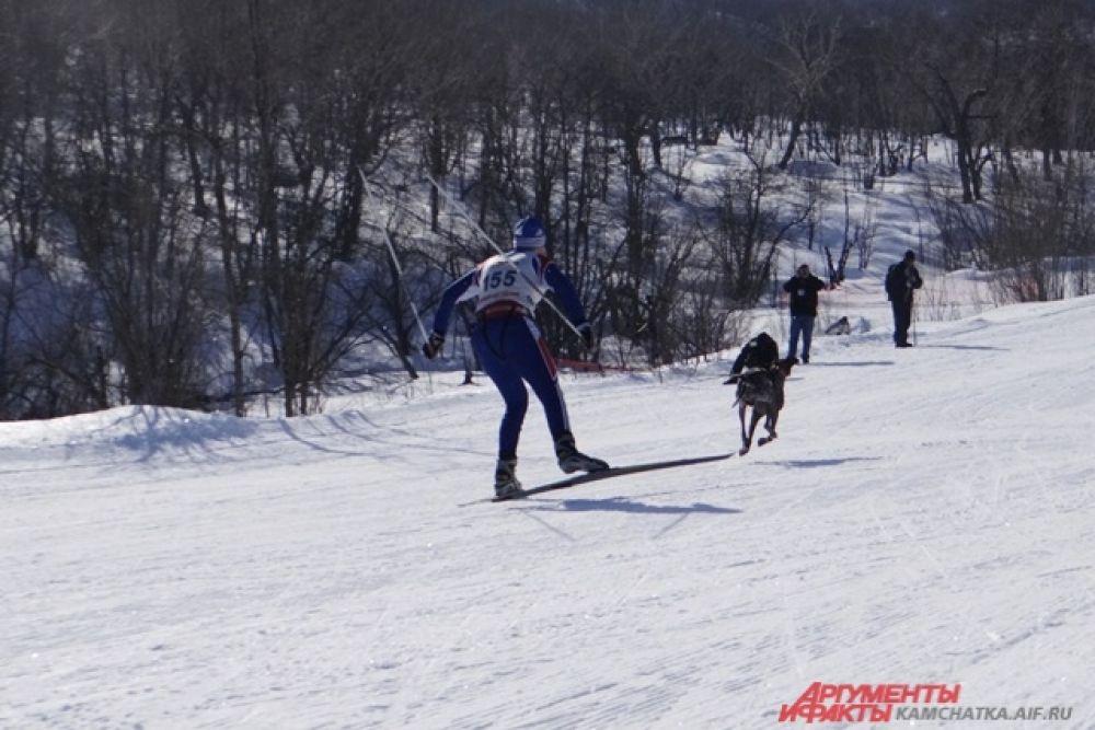 В этой дисциплине лыжник едет с одной или двумя собаками.