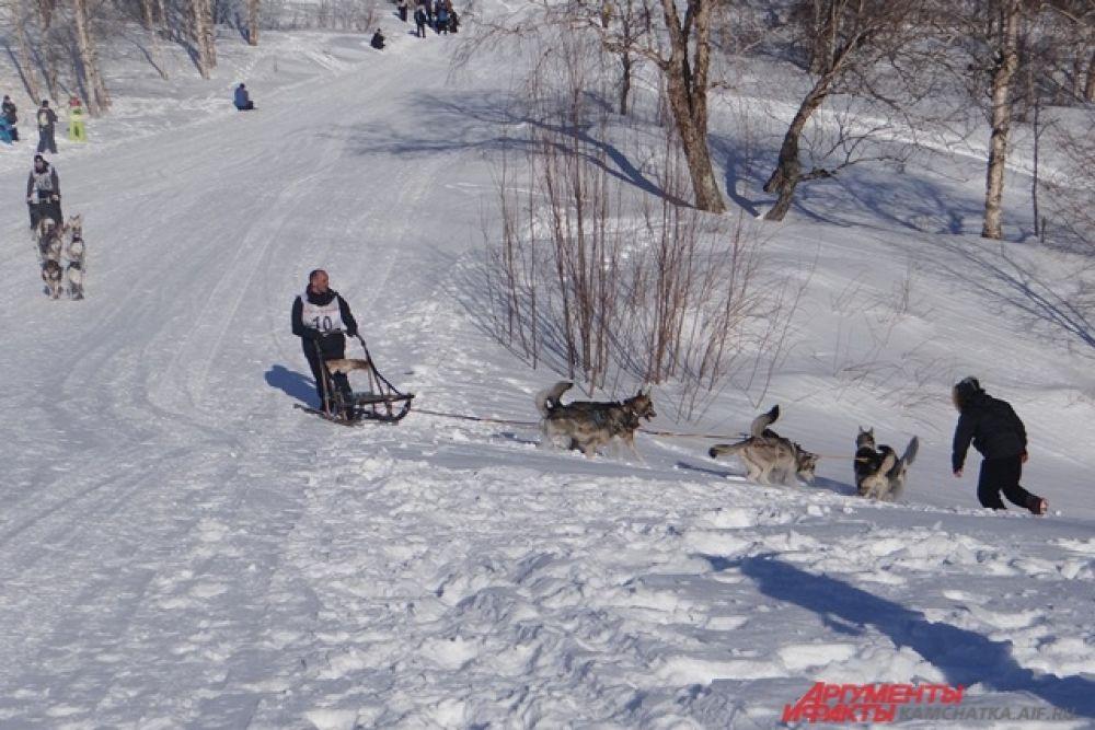 Упряжка Кирилла Шукшина заплутала по дороге, но вскоре вернулась на трассу.