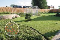 Сад на даче - оформление в стиле хай-тек, подбор растений, мебели, видео