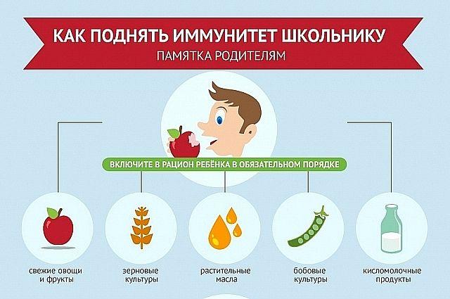 Картинки по запросу иммунитет