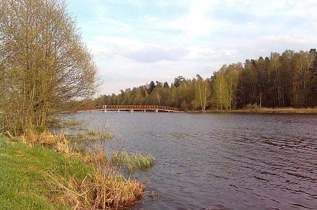 В Екатеринбург съехались юные экологи со всей России