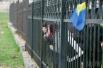 Жены, сестры и матери украинских военнослужащих пришли поддержать родных, которые дислоцируются в Бельбеке