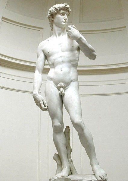 Славу художнику принесла представленная в сентябре 1504 года пятиметровая мраморная статуя, изображающая Давида. Сейчас она воспринимается как символ Флорентийской республики и одна из вершин человеческой цивилизации. До Микеланджело художники изображали Давида в момент триумфа после победы над Голиафом, однако Буонарроти показал героя перед броском, живо запечатлев одно мгновение противостояния.