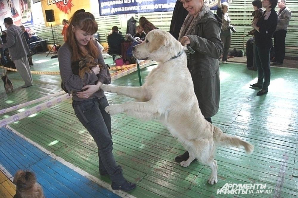 Покажите-ка, что это за мелочь у вас на руках? Точно не щенок?