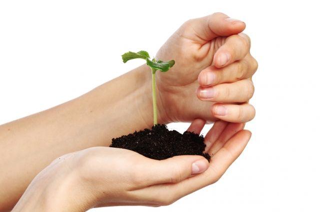Министерство экологии поможет экологам деньгами.