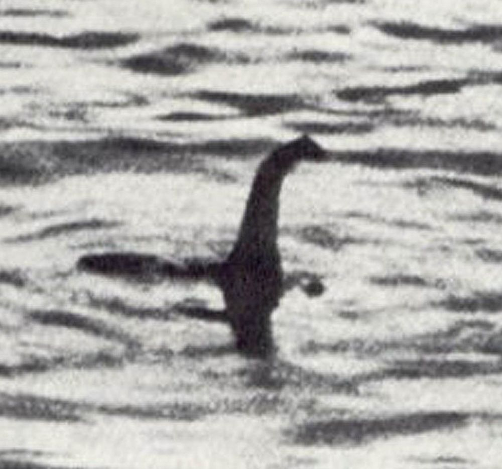 В 1934 году лондонский врач Роберт Кеннет Уилсон представил миру фотографию Лох-несского чудовища, которое он случайно сделал во время путешествия. Через 60 лет было доказано, что снимок подделан Уилсоном и тремя его сообщниками, двое из которых сознались в подлоге.