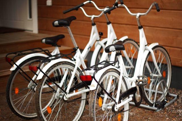 Омичи могут поучаствовать в зимних велогонках.