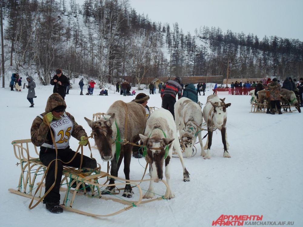 Первым с результатом 30 минут 11 секунд пришёл оленевод из анавгайского хозяйства «Анкеман» - Антон Солодиков.