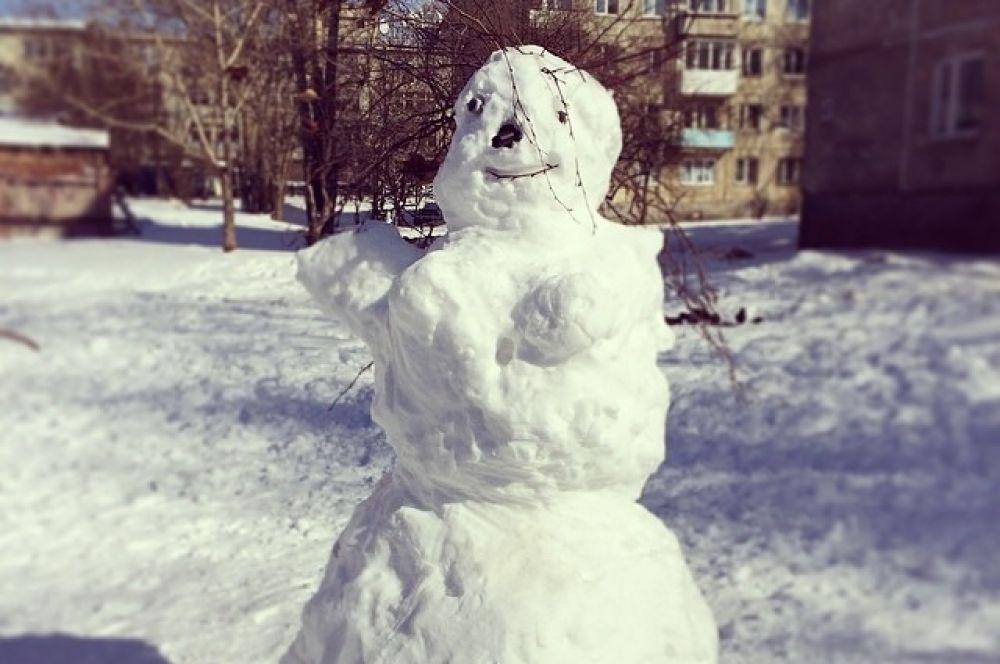 Снежная красавица.