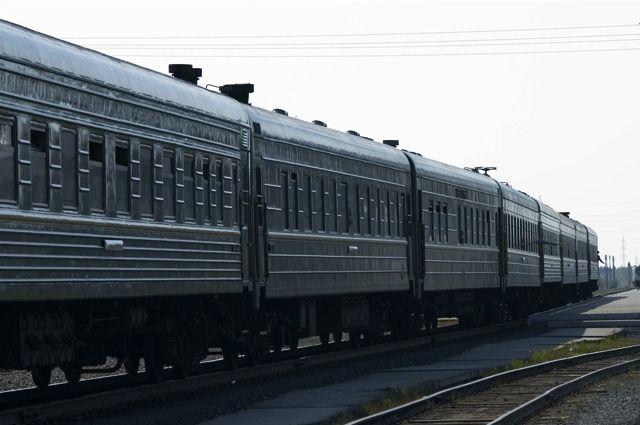 В Омской области с поезда сняли нелегальную партию пиявок.