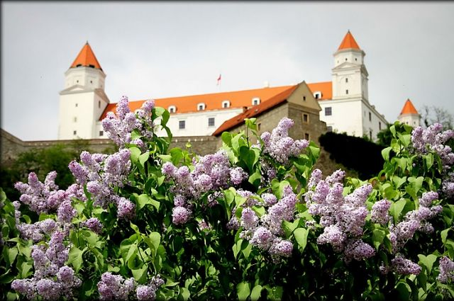 Словакия, Братислава.