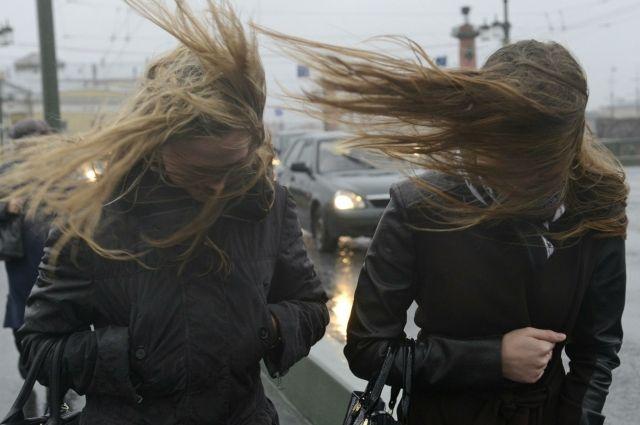 На Омск обрушится сильный ветер.