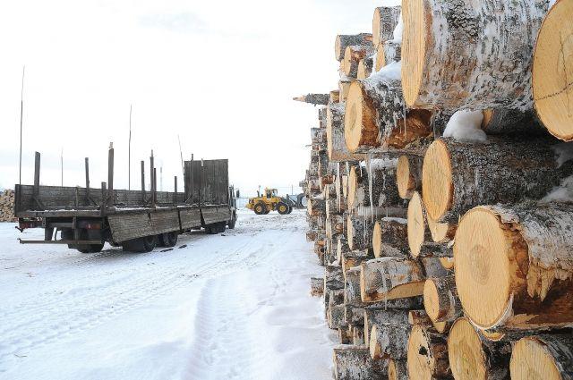 К 2015 году в лесопромышленной области наведут полный порядок.