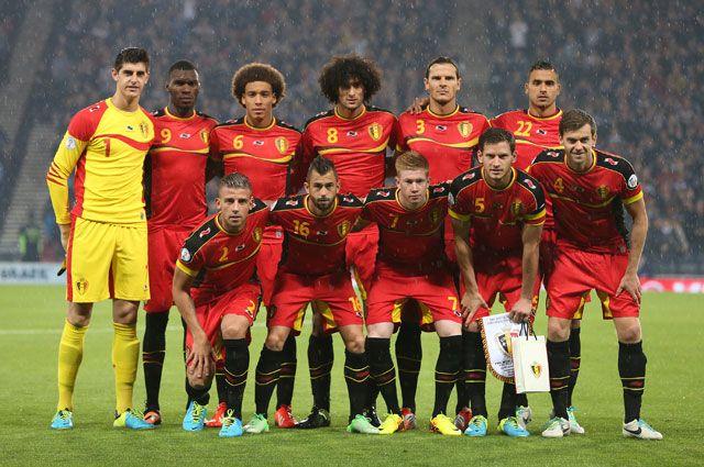 Сборная Бельгии по футболу в отборочном цикле к Чемпионату мира в Бразилии.