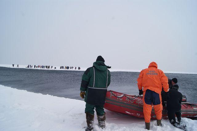 Рыбаки на льдине.