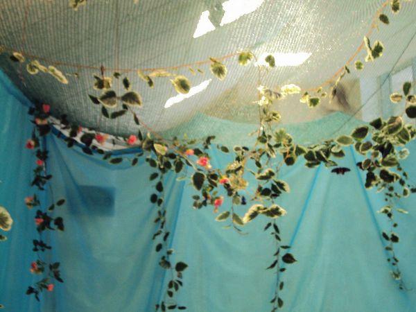 В выставочном помещении создали атмосферу тропиков