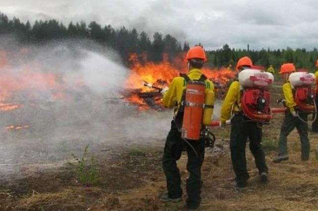 Тушить лесные пожары на Среднем Урале будет 8,3 тыс. человек