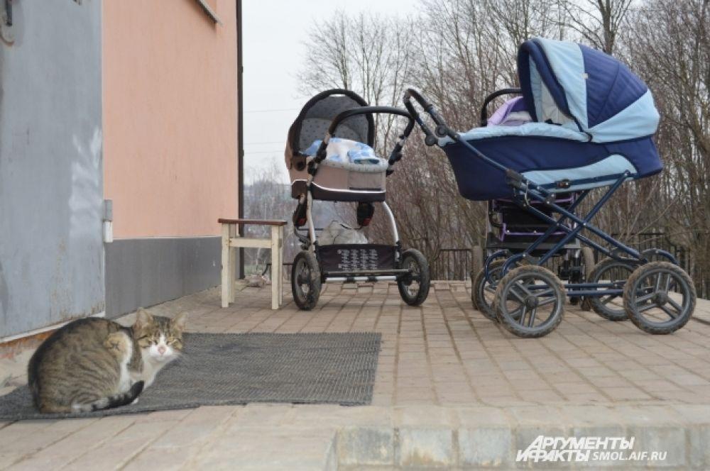 Кошка и детские коляски - будто крылечко обычного дома.