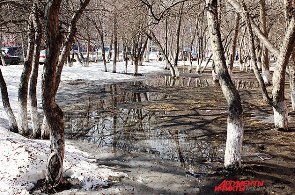 После длительных зимних снегопадов такие лужи - пожалуй, типичное явление для многих новосибирских дворов.
