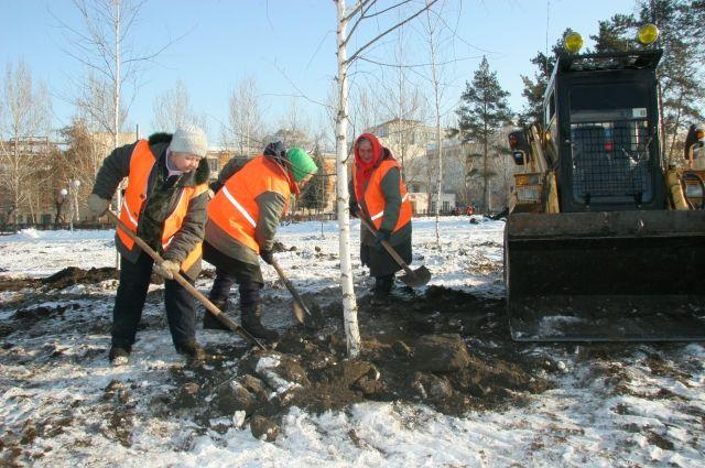 20 тысяч деревьев будут высажены в Челябинске к началу лета