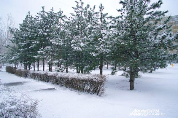 А вот Волгоград в последний уик-энд марта занесло снегом.