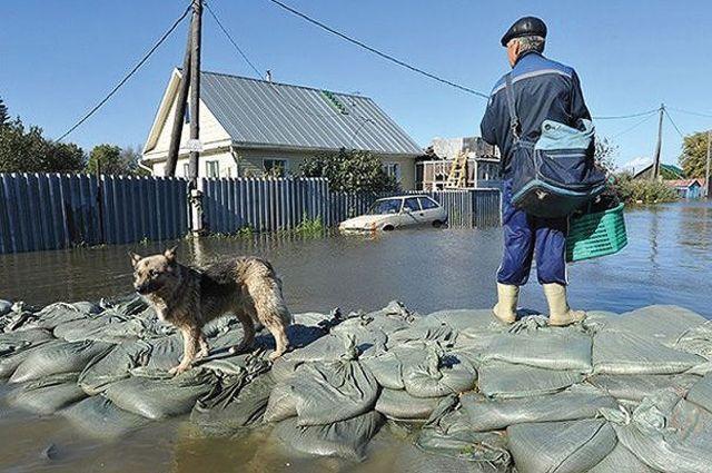 По словам специалистов, этой весной поселок Затон не затопит.