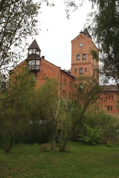 «Замок Радомысль» врача и кандидата в президенты Ольги Богомолец